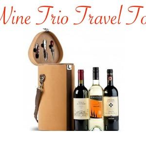 Wine Trio Travel Tote